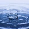 Где в СВАО отдохнуть у воды