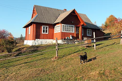 Предложение загородных домов в аренду достигло минимума