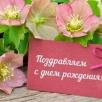 17 лет офису «На Киевской»