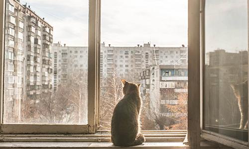 Снос пятиэтажек арендаторов не беспокоит